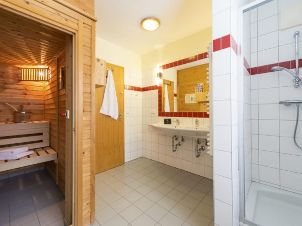landal-katschberg-10l-rennweg-karinthie-10-personen - sauna