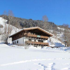 chalet-heimelig-xl-saalbach-hinterglemm-salzburgerland-22-personen - winter