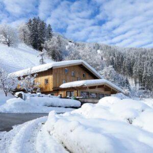 Chalet Talbach - Mayrhofen - Tirol - 20 personen - winter