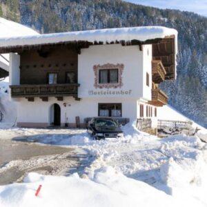 Vakantiehuis Borleitenhof - Tirol - Mayrhofen - 21 personen